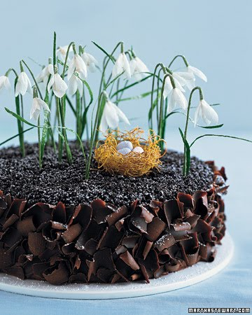 Learn How To Make The Chocolate Cake With Crepe Paper Flowers And Philo Nest Also Carrot Cupcakes Cream Cheese Frosting On Martha Stewarts