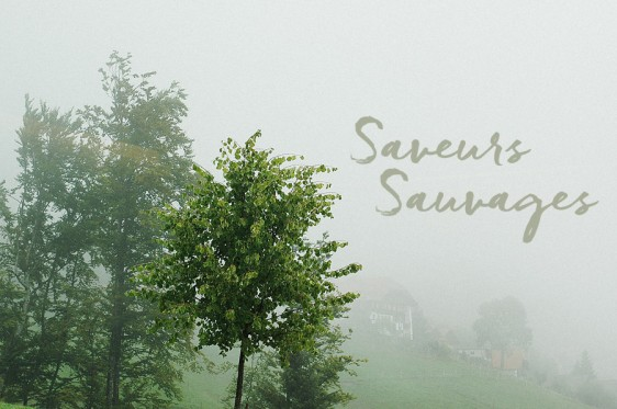 Saveurs-Sauvages-00