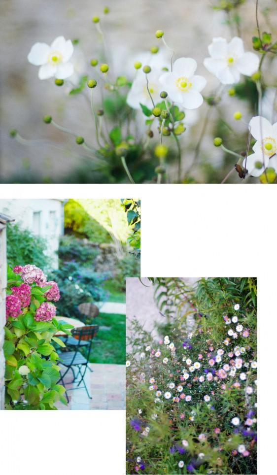 terre-d-or_beaune_jardin